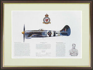 """Hawker Tempest picture """"Hawker Tempest"""" by M.A.Kinnear - NGAP20"""