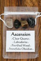 Ascension Crystal Gift Set Quartz Labradorite Petrified Wood Snowflake Obsidian