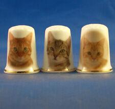 Birchcroft China Thimbles -- Set of Three -- Tabby Cats