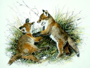 Carl Brenders FULL HOUSE-FOX FAMILY (Hand Colored Litho) PUBLISHERS PROOF PP#7