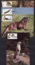 s3711) DDR 1987 MNH** WWF, European Otter 4v MAXICARDS