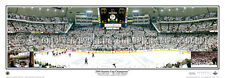 Pittsburgh Penguins 2009 STANLEY CUP VICTORY Mellon Arena Panoramic Poster Print