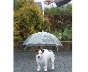 Pet Brolly Lead Dog Umbrella Leash Transparent Canopy Rain Protection 63cm