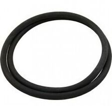 Pentair Clean & Clear Pool Filter Predator and Warrior Tank O-Ring 87300400