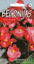 Begonia Flower 15 Seeds Broumov F1 Hanging Pot Containers Pictorial Packet UK