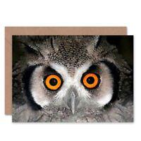 African White Faced Owl Wide Eyes Bird Birthday Blank Greeting Card