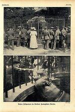 Unsere Feldgrauen im Berliner Zoologischen Garten Bilddokumente von 1917