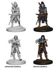D&D Nolzur's Marvellous Unpainted Minis: Elf  Female Bard