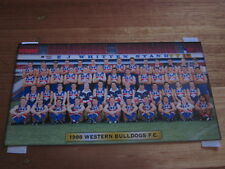 WESTERN BULLDOGS TEAM PHOTO OFFICIAL 1998 BRAND NEW IN SEALED ENVELOPE