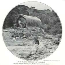 1910 Maori Method Of Cooking, Leaves, Hot Stones
