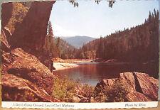 Idaho Postcard 3 DEVILS CAMP Middlefork Clearwater River Lochsa Shira Ross Hall