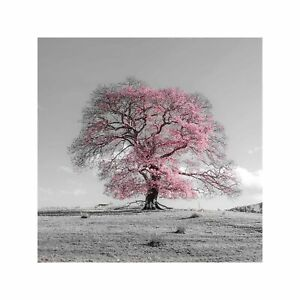 Tree Flowering in Bright Pink on a Grey and Pink Art Wall Decor Print 60x60cm