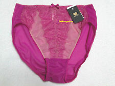 Wacoal Retro Chic Nylon Brief Panties #841186 Rose Violet Medium/6 NWT