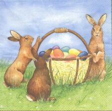 1. tout Paquet serviettes Pâques Bunny de Ambiente 32