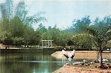 B15990 Animals Animaux China Kwangchow Zoo Garden