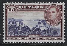 CEYLON : 1938 1r blue-violet & chocolate  wmk sideways  SG 395 MNH