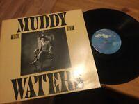 Muddy Waters: King Bee LP..BLUE SKY PZ-37064 (1981) His LAST Recordings VINYL NM