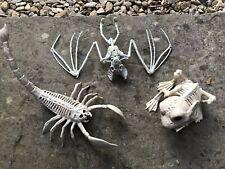 Halloween Skeleton Bat, Frog And Scorpion Skeleton Bones Halloween Props