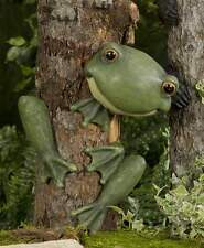 "14"" Frog Tree Hugger Polystone"