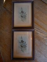 Vintage matching Bird Pictures Prints Shabby Country Farmhouse 6x8