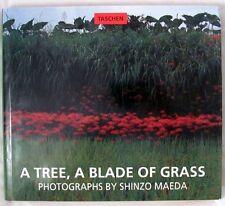 Maeda ,Shinzo: A Tree, A Blade of Grass; Okumikawa; The Nippon Alps First Editio