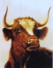 Rosa Bonheur  Young Bull