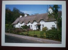 POSTCARD HAMPSHIRE LYNDHURST - SWAN GREEN IN THE NEW FOREST
