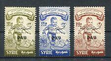 Siria V 22/24 correctamente post frescos... 1/82
