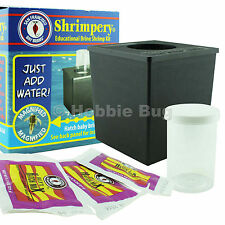 Brine Shrimp Eggs Hatchery Kit Shrimpery (3pk Hatch Mix) - San Francisco Bay