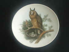 """POOLE Small Plate  LONG EARED OWL  & Owlets 6"""" Diam EXCELLENT  J GOULD 1804-1881"""