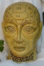 Vintage Phrenology Head Bank Hand Painted-Paper Mache-Medical Steampunk Old Rare