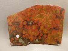 Morgan Hill Poppy Jasper Lapidary Rough Rock Stone Slab #O12