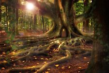 MYSTICAL FAIRY WOODLAND FOREST TREE CANVAS PICTURE POSTER PRINT UNFRAMED 818