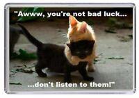 Fridge Magnet Cat Animal Pet Quote Present Novelty Funny