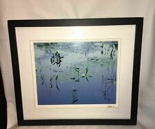 Rodney Lough Jr Photo, Pickle Weed & Lily Acadia National Park Maine 8x10 Signed
