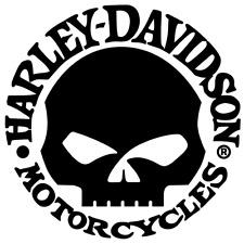 2 x Harley Davidson Skull logotipo muchos colores tamaño 10 cm x 10 cm prestigio