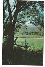 Scene in Heber Valley, Utah, Unused Vintage Postcard