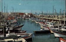San Francisco Amerika USA ~1960/70 Fishermans Wharf Hafen Schiffe Ships Fischer