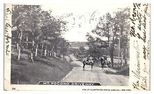 1903 Mt. Pocono Driveway, PA Postcard *6T16