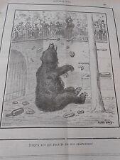 Caricature 1891 L'ours au jadin des plantes