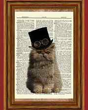 Steampunk Cat Glasses Hat Persian Dictionary Vintage Art Print Poster Picture