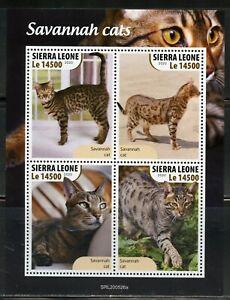 SIERRA LEONE 2020 SAVANNAH CATS SHEET MINT NEVER HINGED