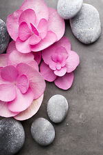 STUNNING PINK FLOWER PETALS SPA ZEN STONES CANVAS #835 FLORAL PICTURE WALL ART