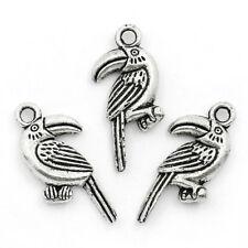 6 pcs TOUCAN BIRD Tibet silver Charms Pendants DIY Jewellery Making