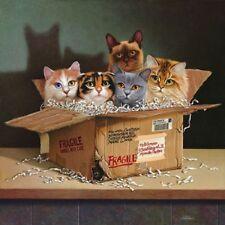 Braldt Bralds SIX PACK art print, Cats