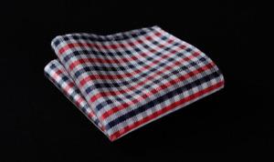Silk Pocket Square Red Plaid Navy Blue Striped Silk Check