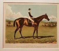 1890 Antique Horse Racing Print AYRSHIRE EPSOM DERBY + 2000 GUINEAS + DONCASTER