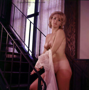 Bunny Yeager Estate 1966 Color Transparency Photograph Nude Model On Stairway
