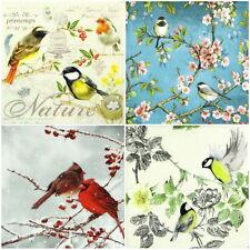 TOVAGLIOLI di carta 4x-COLORATA Birds-per feste, Decoupage Decopatch Craft Mix