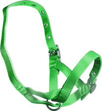 Green Nylon TetheringRearing  Halter To Suit Calves, Bucks, Rams And Deer 3343